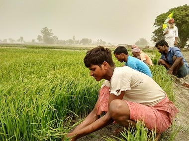 Revamping agriculture: Govt scores high on intent, patchy on implementation; litmus test will be persuading states to reform