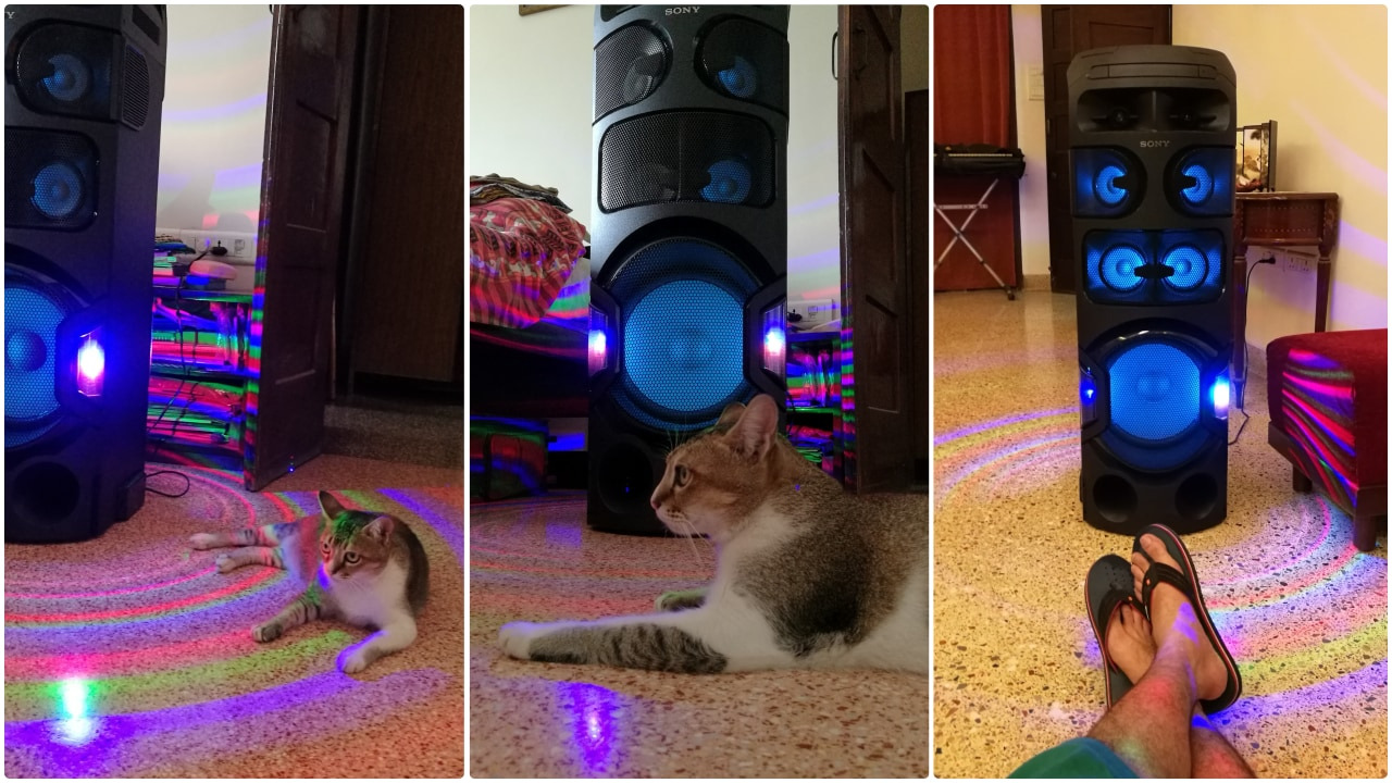 Funnily my cat Xena enjoys the bling and sound a lot more than I do. Image: tech2/ Nikhil Rastogi