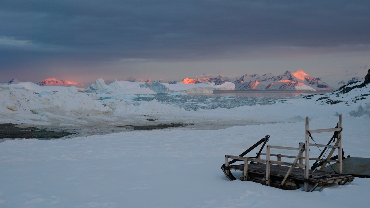 Scientists in Antarctica welcome winter solstice by plunging into icy waters