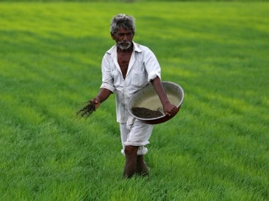 Chhattisgarh paddy farmers. Representational image. Reuters