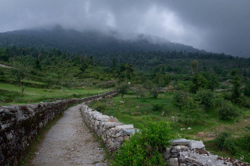 The road up to Dayara Bugyal, a high altitude meadow and a popular trek in this region
