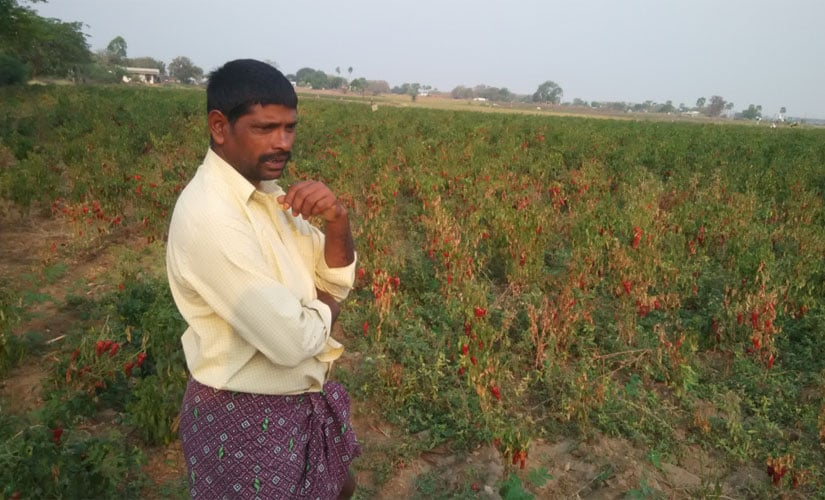 Googleoth Satyam a tenant farmer who belongs from Lambada community (tribal), from Pilluri Ramayya Palli village within 5 km radius of KTPP. Image courtesy Rajesh Serupally and Hema Vaishnavi