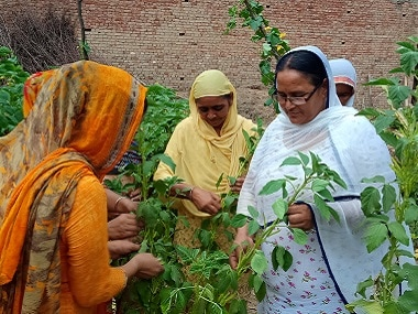 A group of women who adopted organic farming methods in Punjab's Bhotna. Image Courtesy: 101Reporters/Sukhcharan Preet