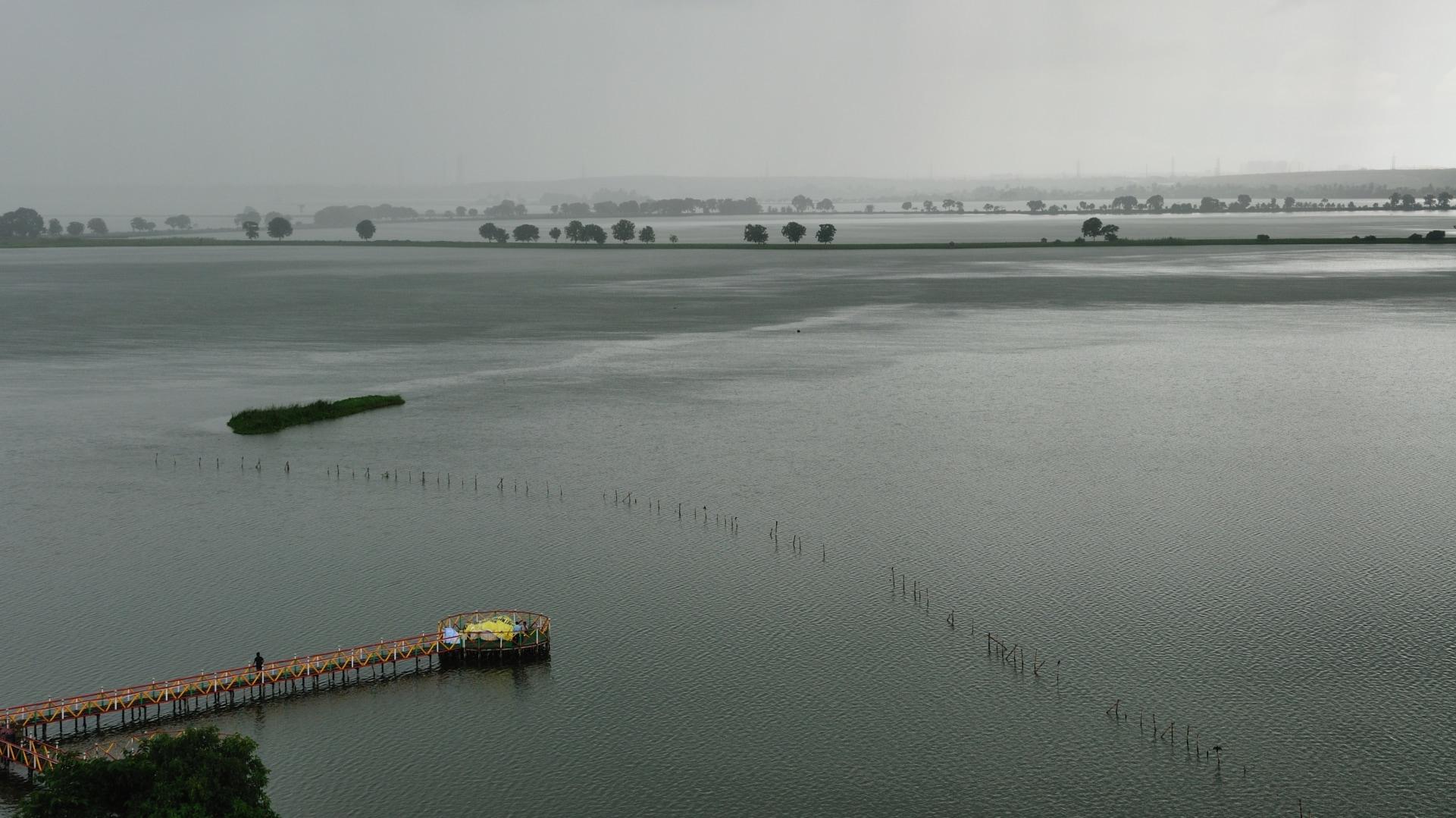 wetlands (1)