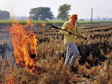 Farmers in Haryanas Karnal district burn stubble despite prohibitions, say they are helpless with no alternative