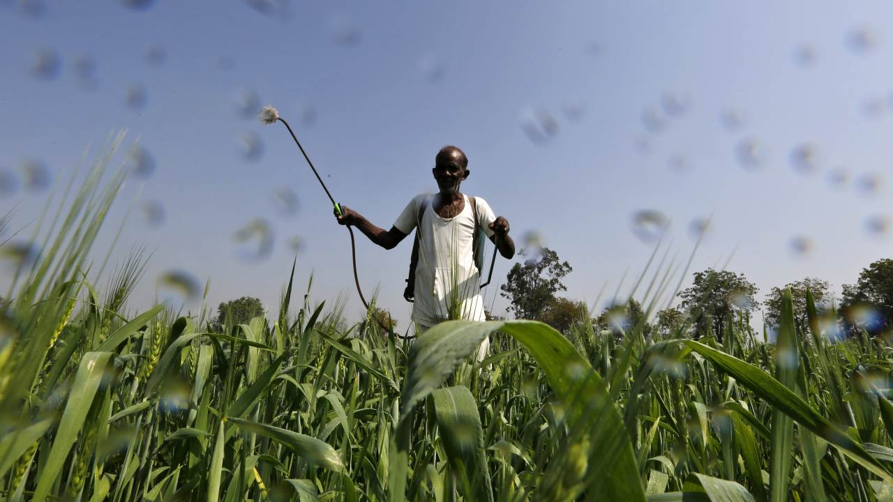 UN warns of growing threats to food systems, livelihoods in agriculture- Technology News, Gadgetclock