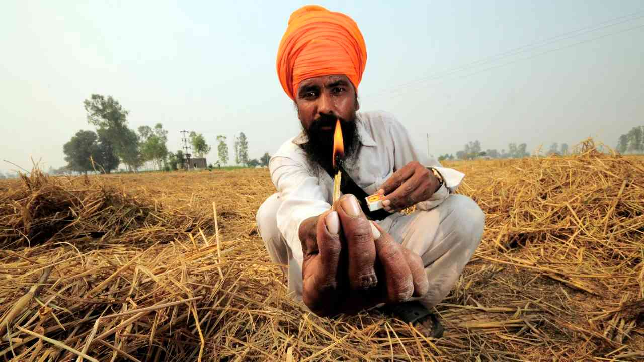 Why farmers are still burning stubble despite fines, government assistance