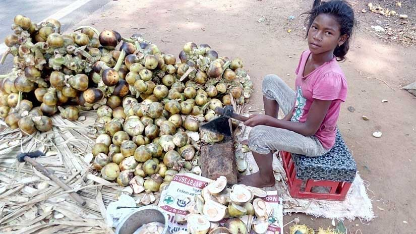 Twelve-year-old Sampurna Sahoo sells palm fruit, goes to school and also cooks for a family of seven. Image courtesy: Sneha Rout
