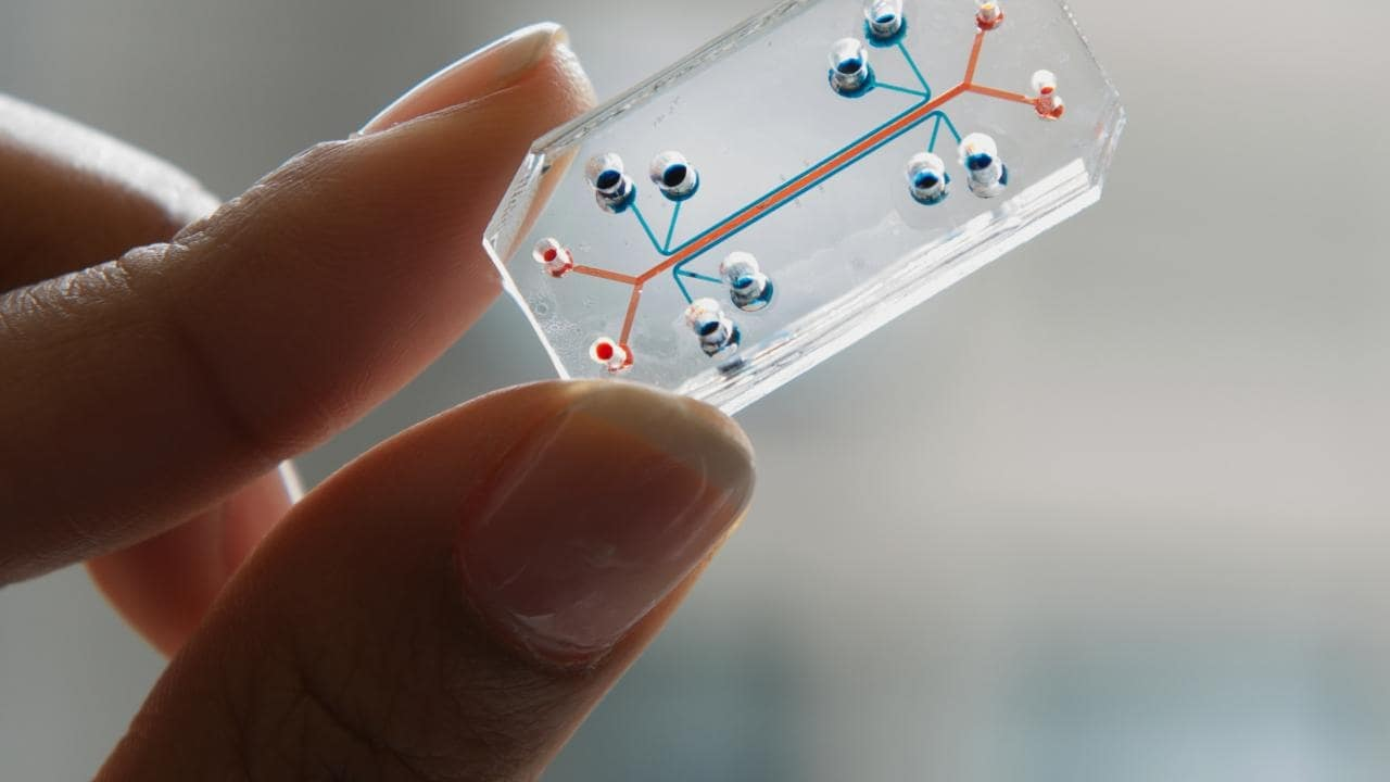NASA plans to send living tissue, organs chips to ISS for microgravity experiments- Technology News, Firstpost