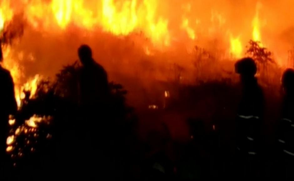 Teams of Mumbai Fire Brigade and officials from the Forest Department and other agencies had reached the area and the fire was doused after an overnight operation. ANI