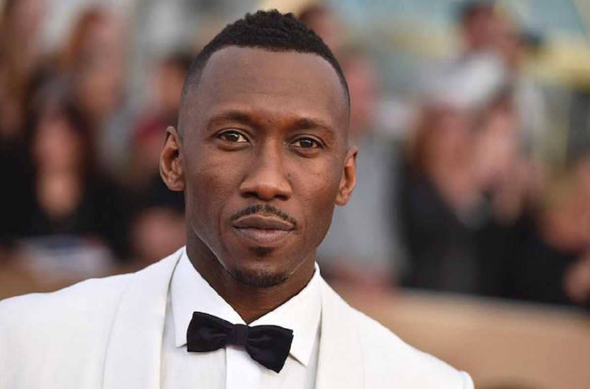 Mahershala Ali says black actors dont get cast on potential: House of Cards gave people permission to cast me