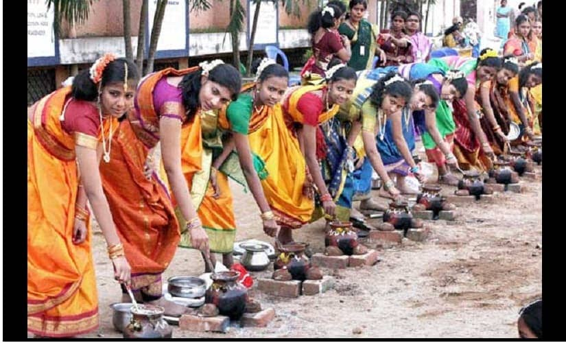 Students celebrate Pongal at their school in Chennai. Source: PTI