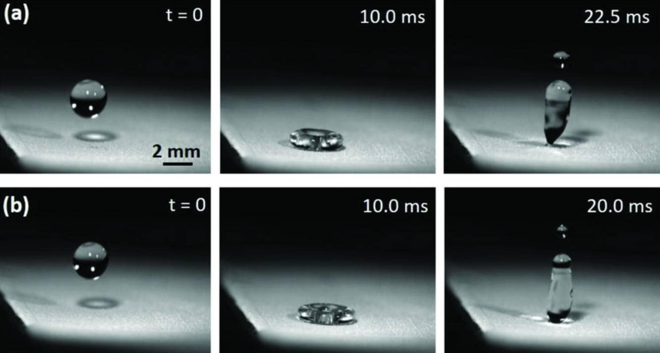 Water droplet bounces off the organic water-repellant material. Image: Wiley/
