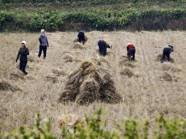 North Korea facing 1.4 million tonne food shortfall, asks United Nations to help address looming crisis