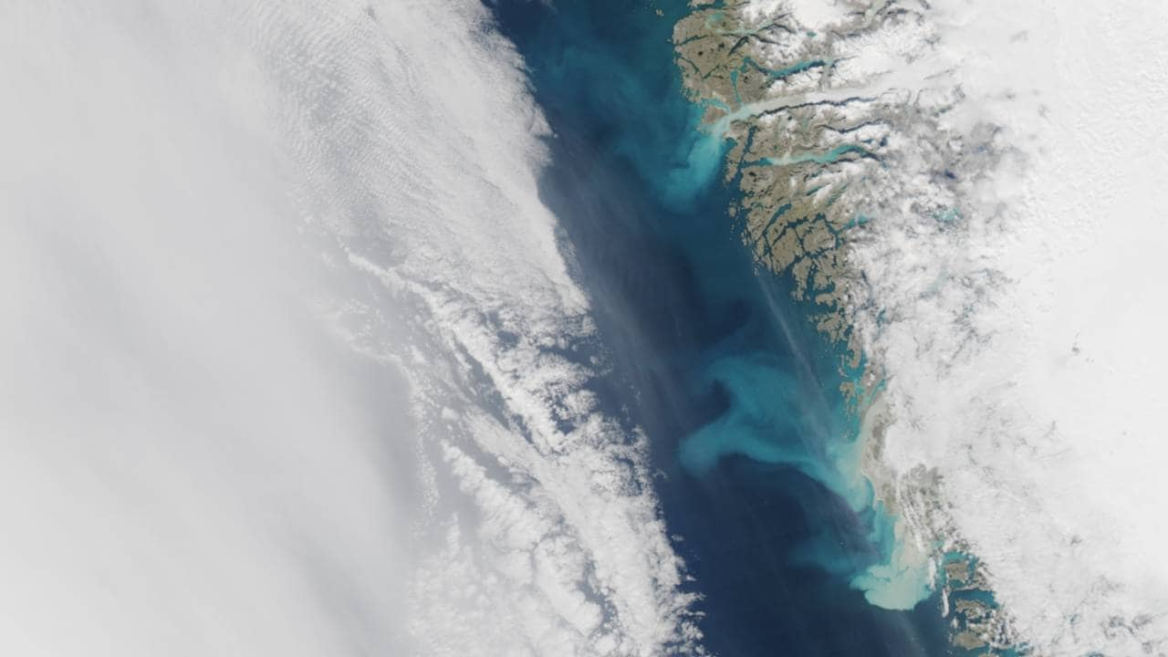 Sediment plumes off Greenland coast seen from a satellite. Image courtesy: NASA/EOS