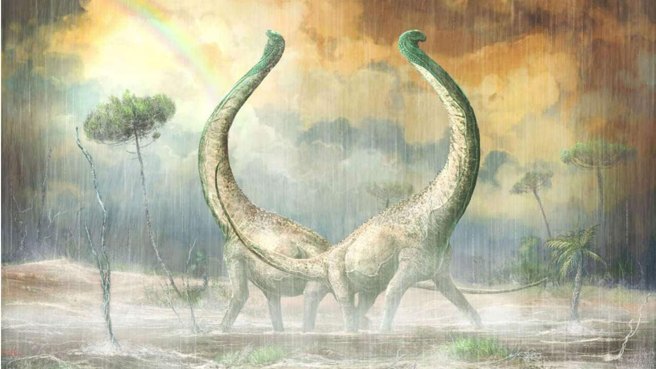 Excavated skeleton of long-necked plant-eater sheds light on dinosaur evolution