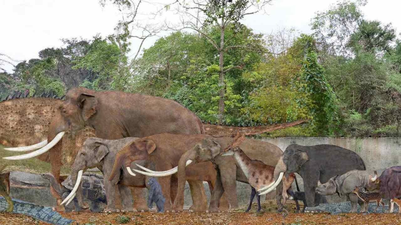 Our meat cravings are driving the worlds largest animals to their extinction
