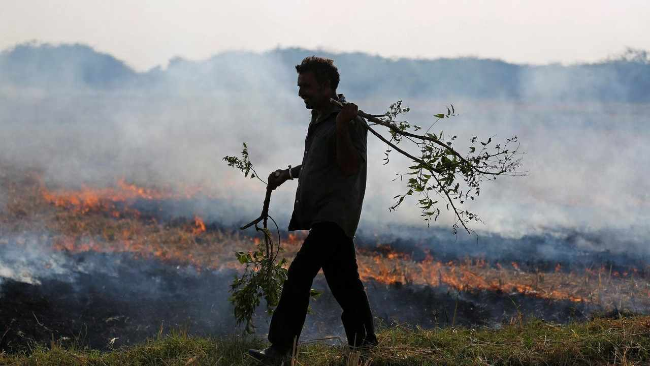 A farmer burns paddy waste stubble in a field on the outskirts of Ahmedabad in November, 2017. Reuters