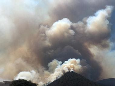 As Bandipur forest blaze finally dies down, activists question missing fire lines and vacant posts