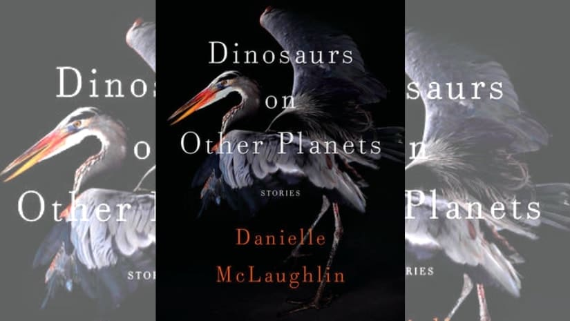 Windham-Campbell Prize winning author Danielle McLaughlin on the power of short stories, and her creative process