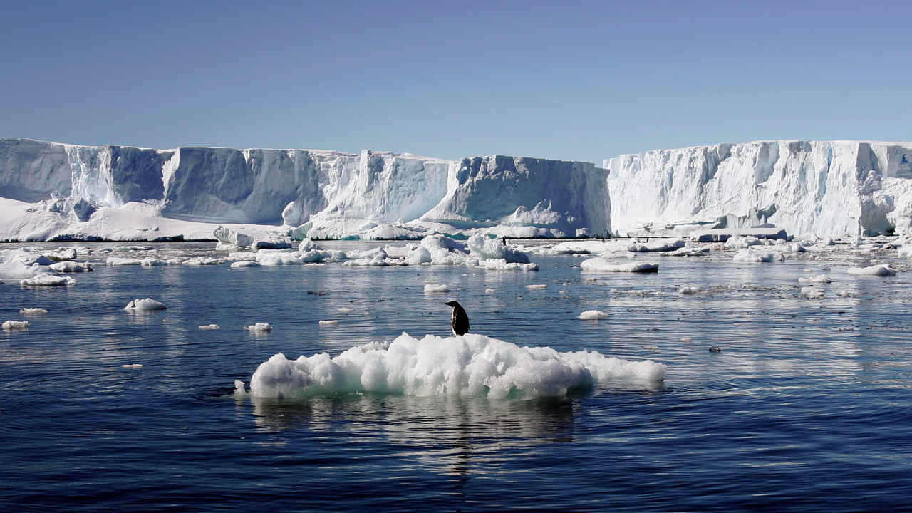 Climate change, the warming of the Arctic will cost the world trillions: study