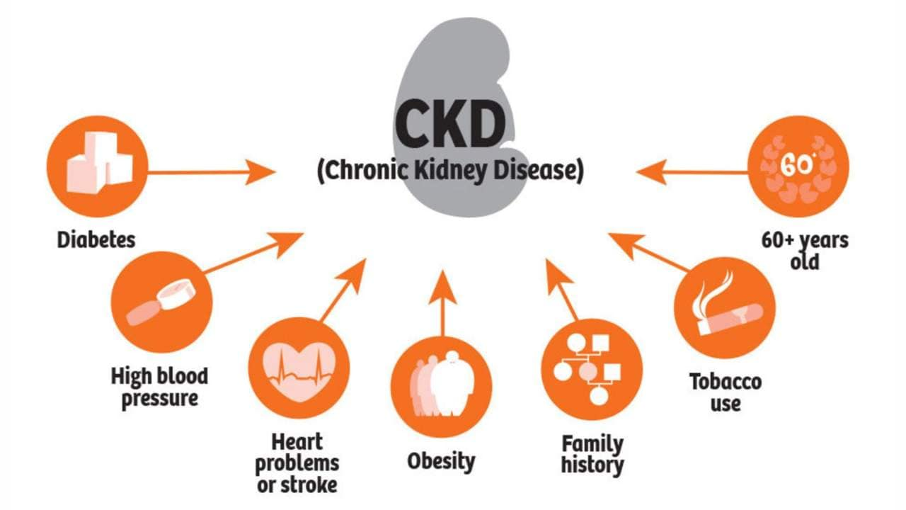 Risk factors of chronic kidney disease. Image courtesy Siemens Healthcare