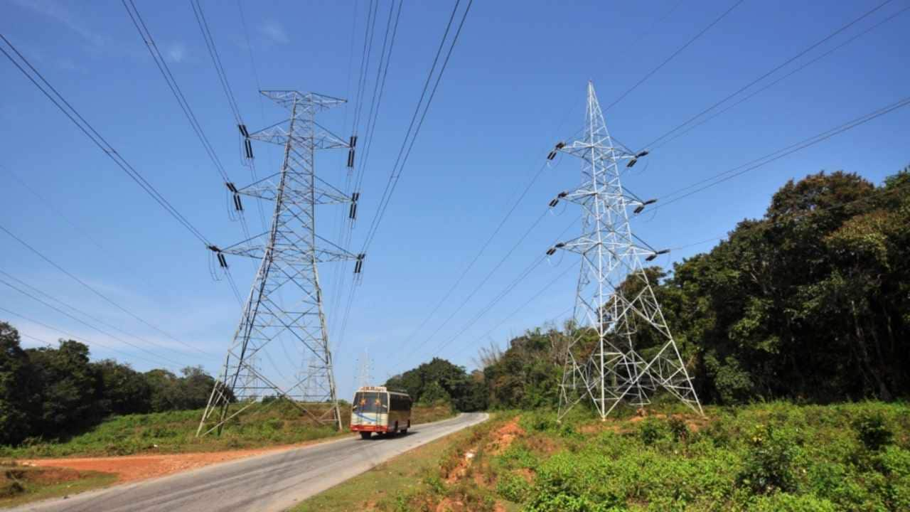 Roads and powerlines running through forests. Image courest: National Conservation Foundation