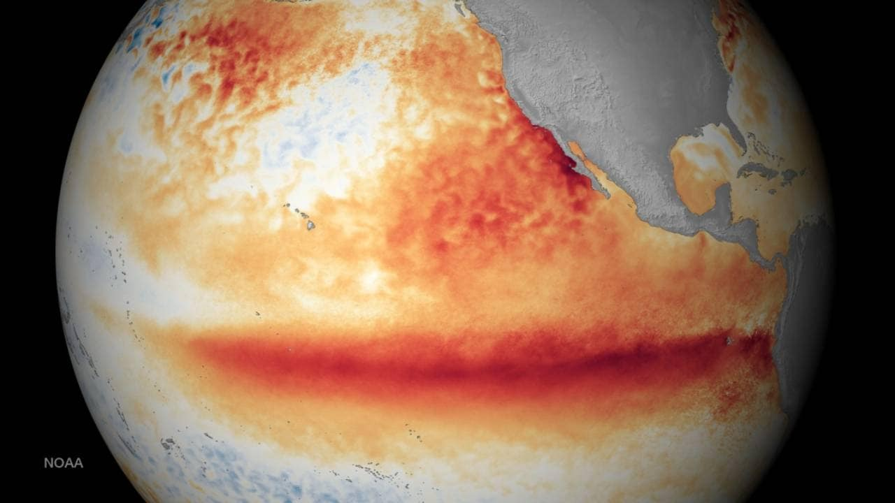 El Nino events are growing more intense under continued climate change: study - Firstpost