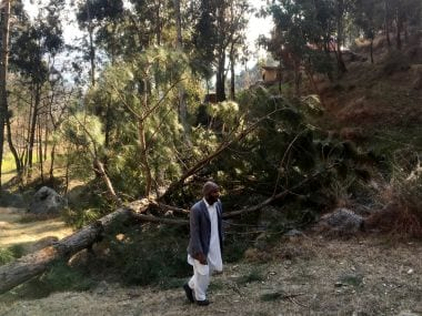 "A report by Reuters said that there are no ""displaced trees around the madrasa."" But eyewitnesses, as claimed in another report by Reuters, described ""four bomb craters and some splintered pine trees (as seen in the photo). Reuters"