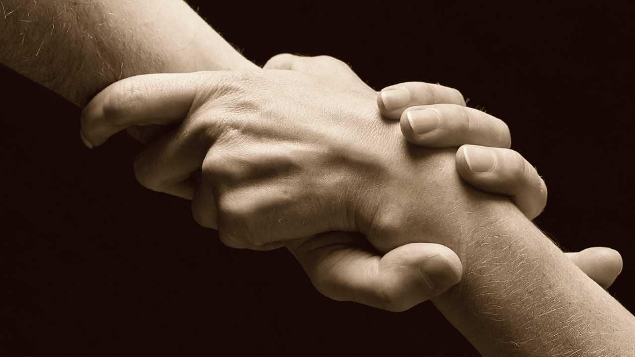 Empathy Companionship Human Emotion