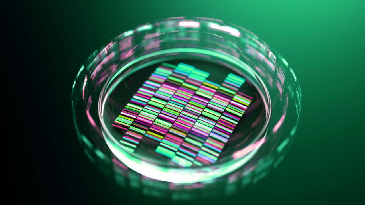 Gene editing technology has a variety of potential applications. Image: Getty