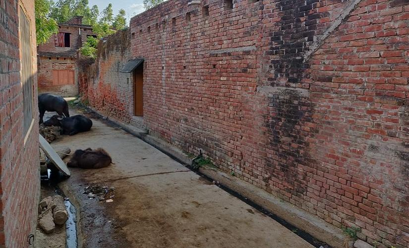 Poor roads in Unnao are a major local issue, especially in rural areas. Firstpost/Ananya Srivastava