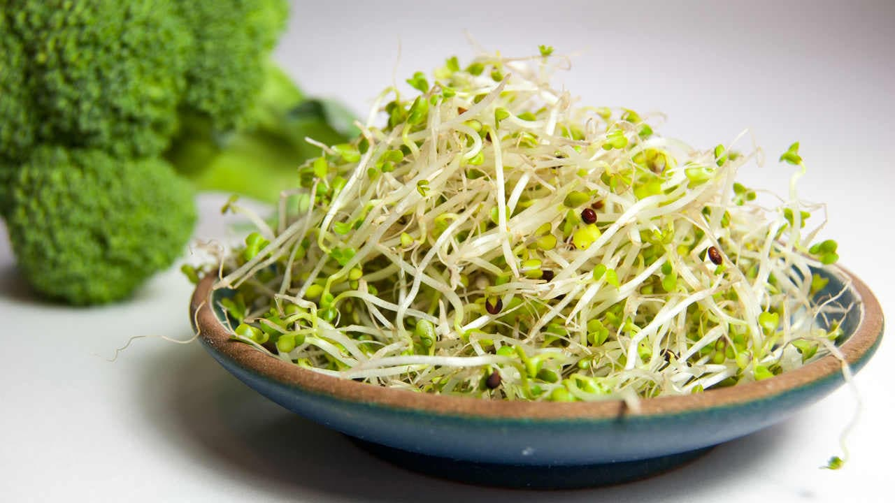 Chemical In Broccoli Sprouts May Treat >> Eat Your Greens Broccoli Sprouts Brings Down Psychosis In