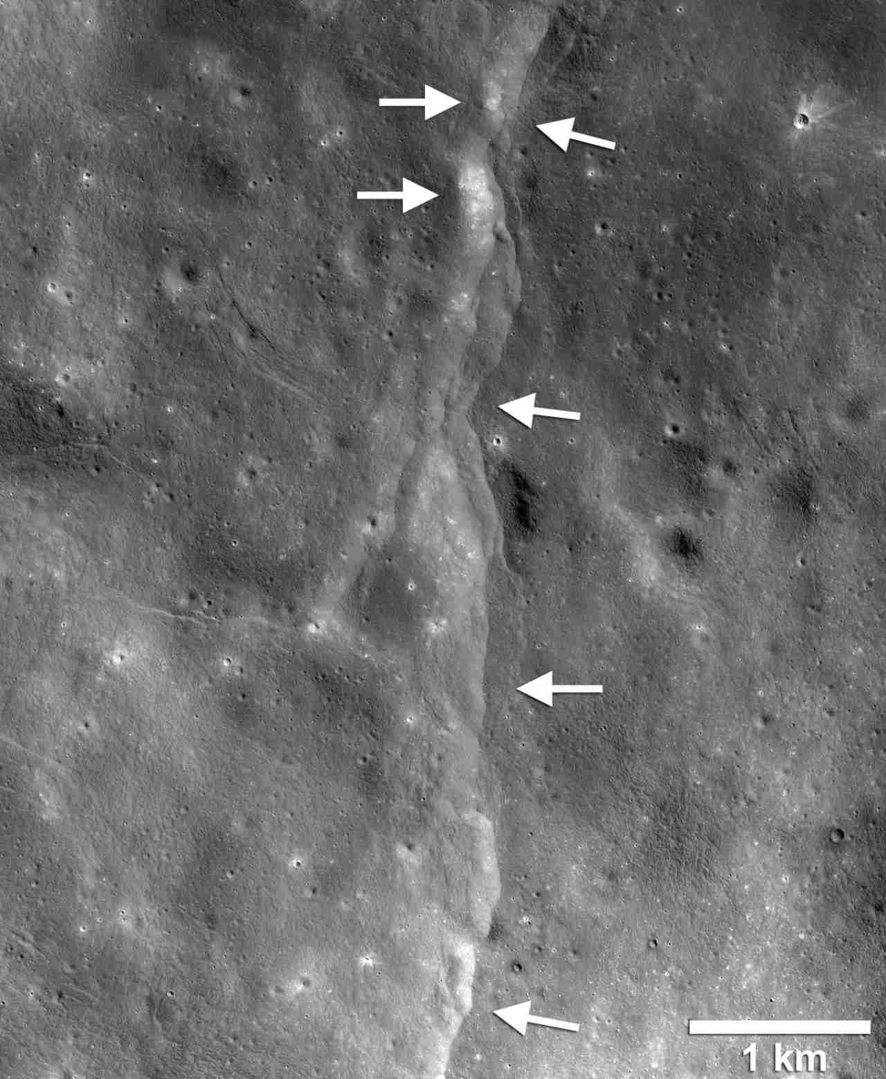 This prominent thrust fault is one of thousands discovered in images by the NASA Lunar Reconnaissance Orbiter Camera (LROC). The fault scarp or cliff is like a stair-step in the lunar landscape, formed when the near-surface crust is pushed together, breaks, and is thrust upward along a fault as the Moon contracts. Image: NASA/LROC