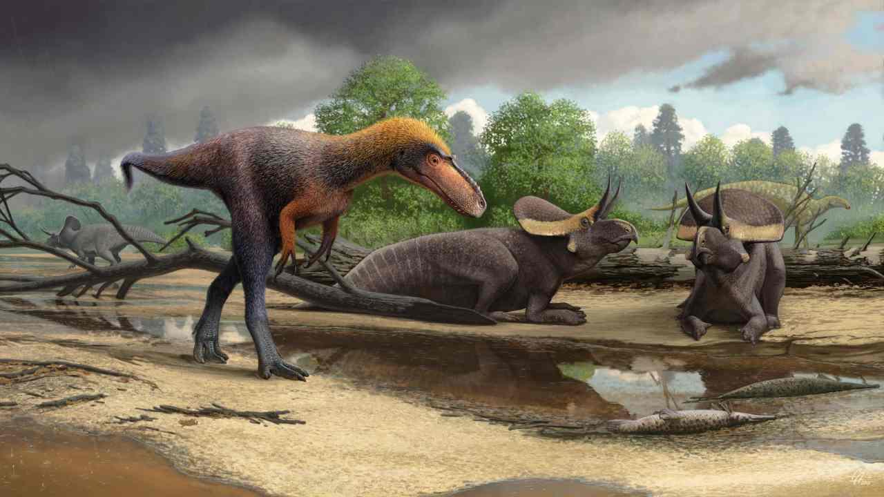 Meet Tyrannosauroid: The three-foot-tall cousin of the mighty Tyrannosaurus rex