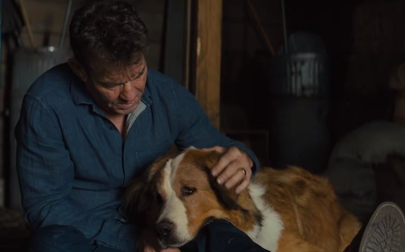 A Dogs Journey movie review: Heartwarming take on human dynamics through the eyes of mans best friend