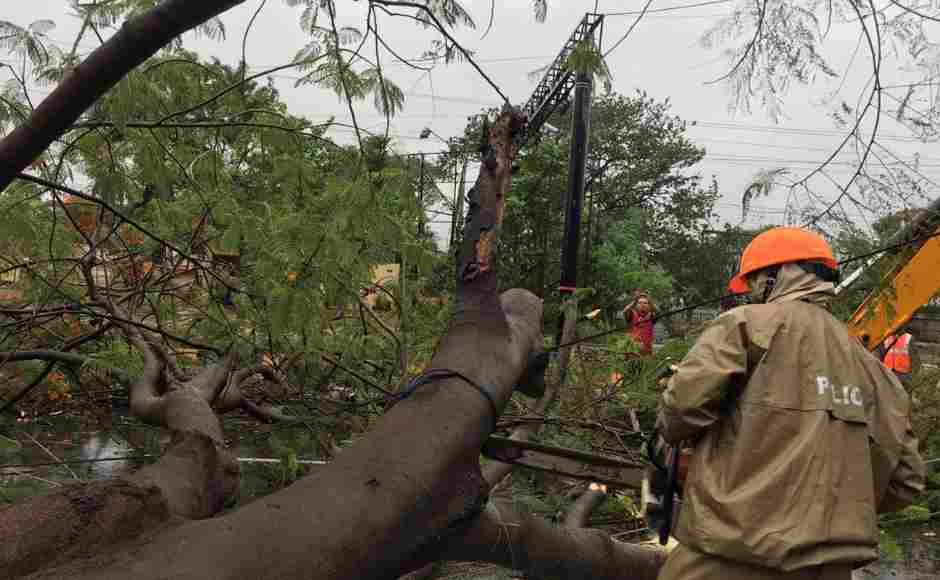 Numerous trees were uprooted in Bhubaneswar as Fani hit the capital city. Bibhuti Mohapatro /101Reporters