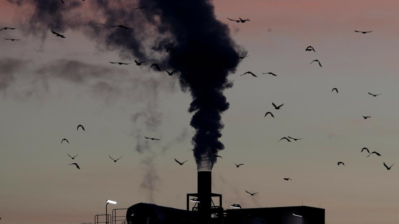 Birds fly past a smoking chimney in Ludwigshafen, Germany. AP