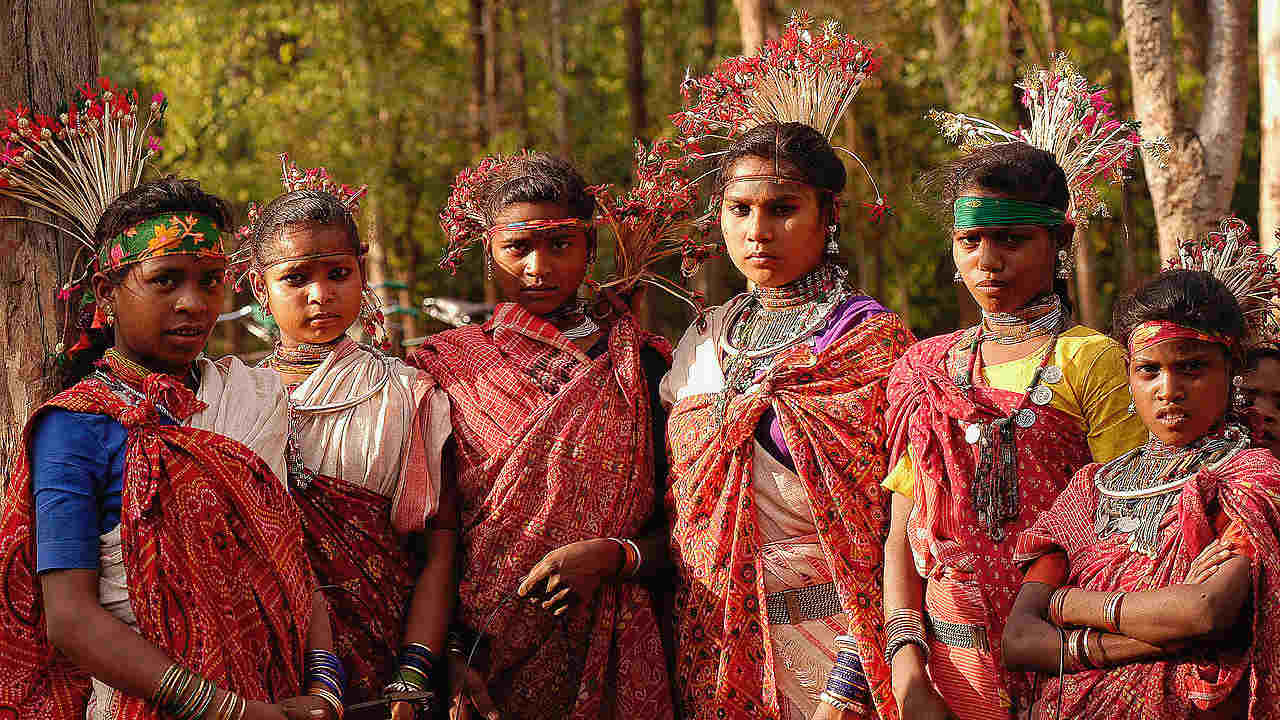Wildlife conservation in India could benefit from collaboration with tribal communities