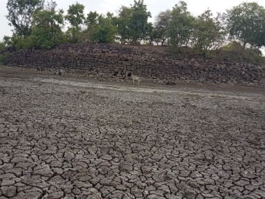 Ken-Betwa river link project boon or bane? Parched Bundelkhand residents hopeful but experts warn of ecological disaster