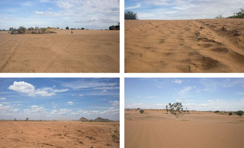 The sand is all pervasive, says M. Basha, another desert cultivator, 'it comes into our homes; it gets into our food'. Bottom row: The only large forest in Anantapur now is the jungle of windmills on the horizon everywhere. Rahul M/People's Archive of Rural India