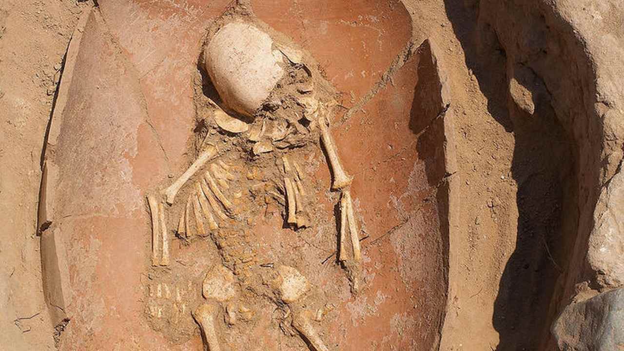 DNA shows that biblical Philistines came to the Middle East from southern Europe- Technology News, Firstpost