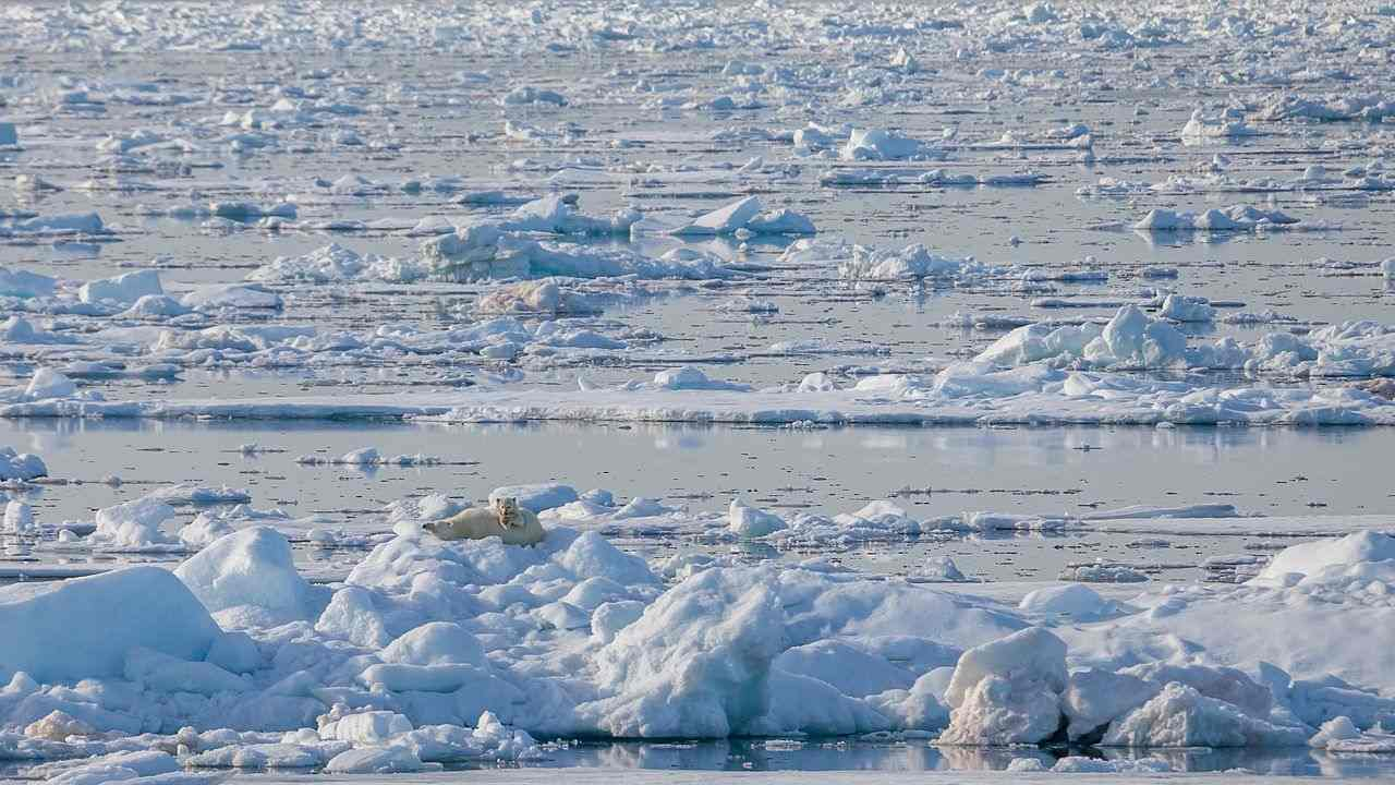 Researchers find microplastic in ice block taken from deep in the Arctic Ocean