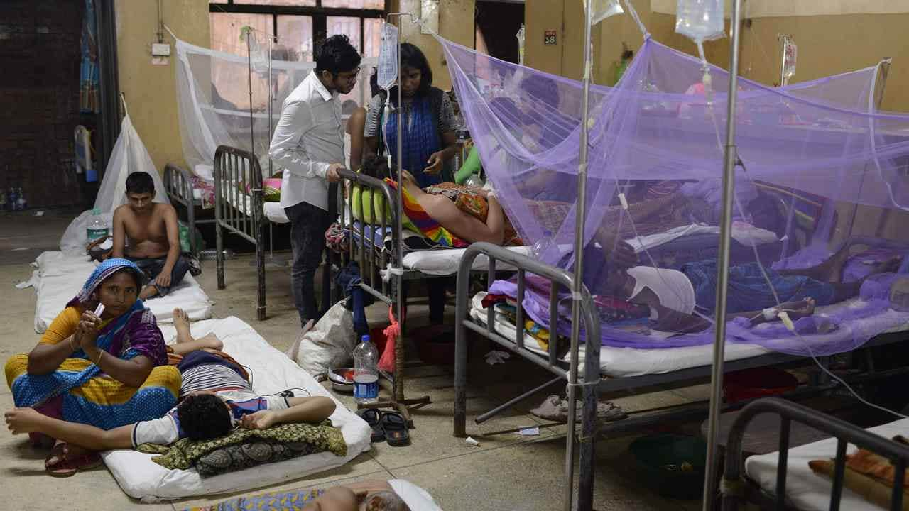 Dengue outbreak in Bangladesh: 'We are scared', say residents as viral fever overwhelms nation; 23 dead... - Firstpost thumbnail