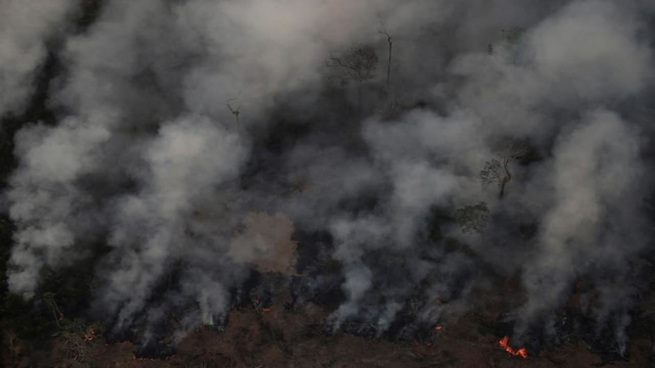 More fires now burning in Central Africa than in the Amazon