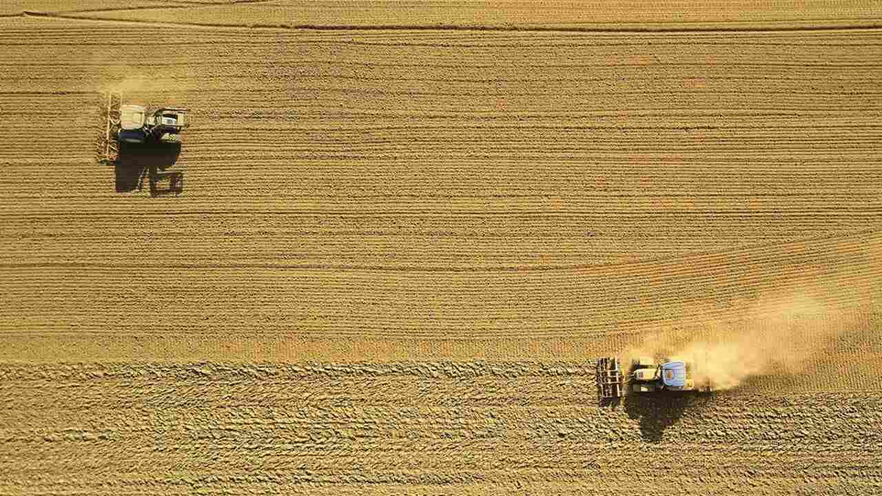 IPCC Land Use report: Clearing, farming land contribute third of greenhouse emissions