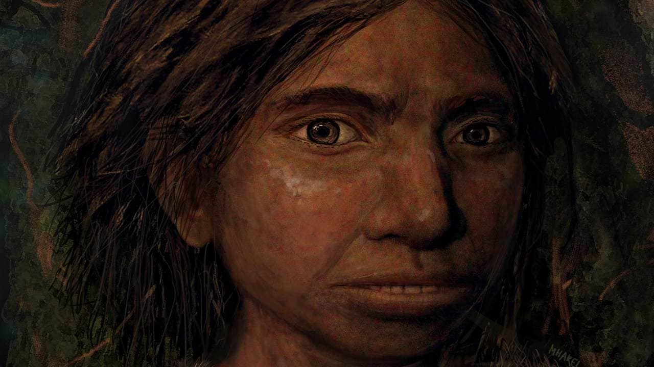 Scientists have reconstructed skeleton of prehistoric girl from 70,000 years ago- Technology News, Firstpost