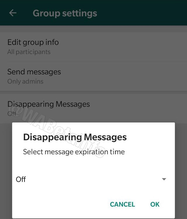 WhatsApp Beta begins testing 'disappearing messages'