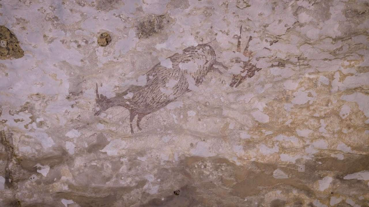 A 44,000-year-old cave painting is the oldest evidence of human storytelling, religion- Technology News, Firstpost