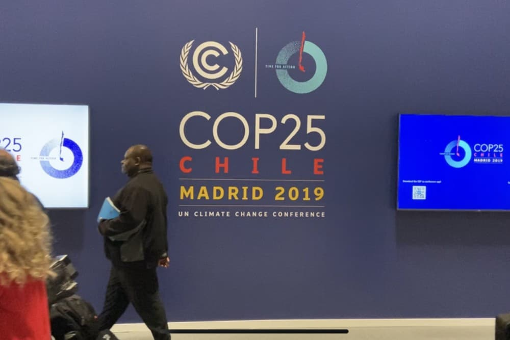 The world is heading towards an emergency-like situation, is the message that's emerging from the UN climate conference in Madrid. Image credit: Kartik Chandramouli/Mongabay.